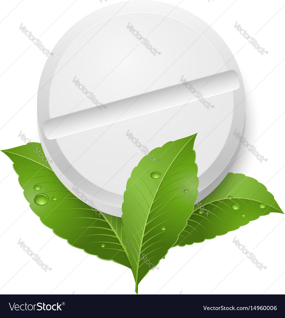 Tablet and leaves on white background