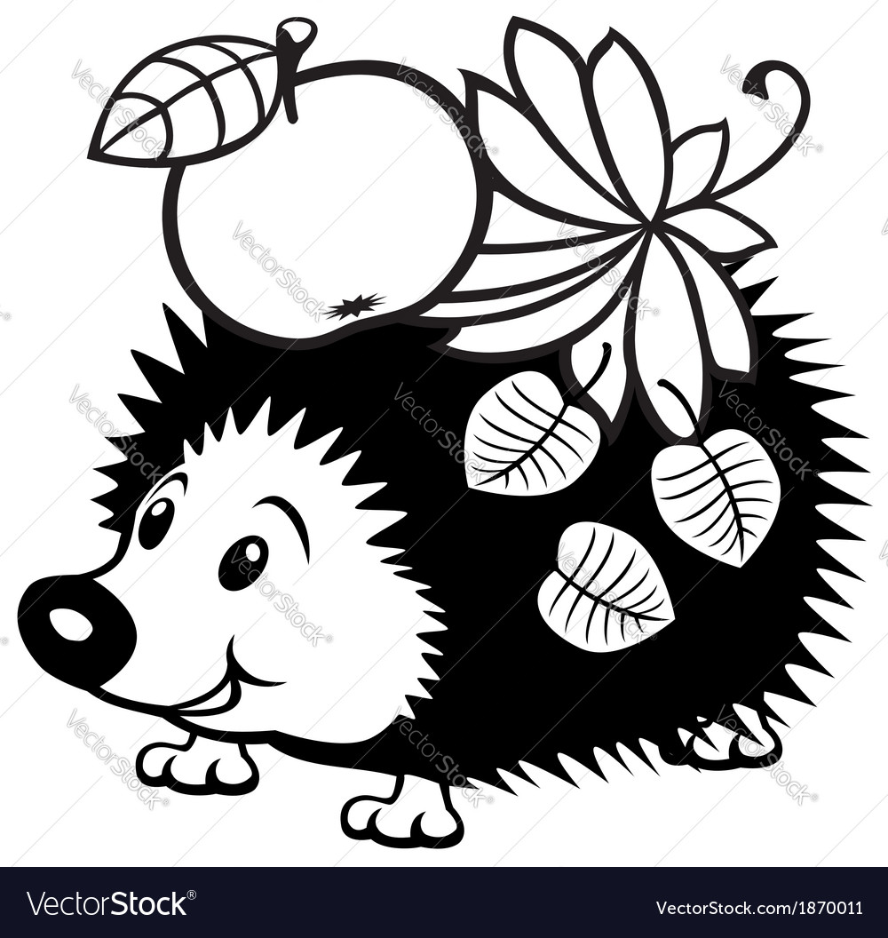 Cartoon hedgehog black white