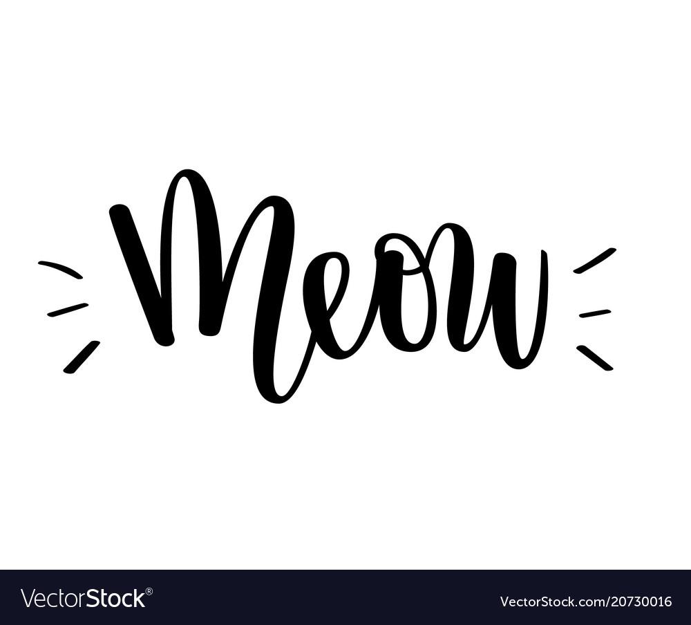 Meow kitten cat love lettering vector image