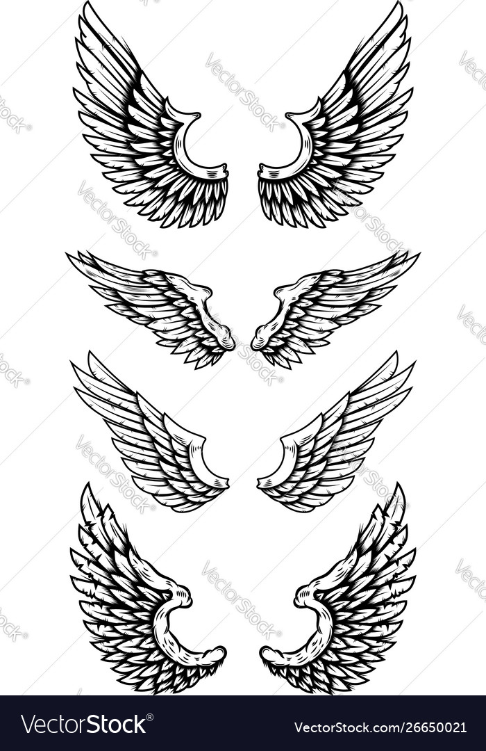Set eagle wings in tattoo style design