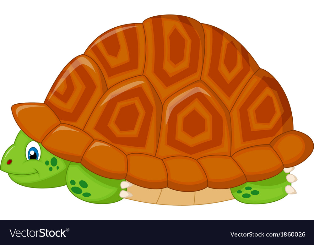 Turtle Cartoon Hiding In His Shell Royalty Free Vector Image