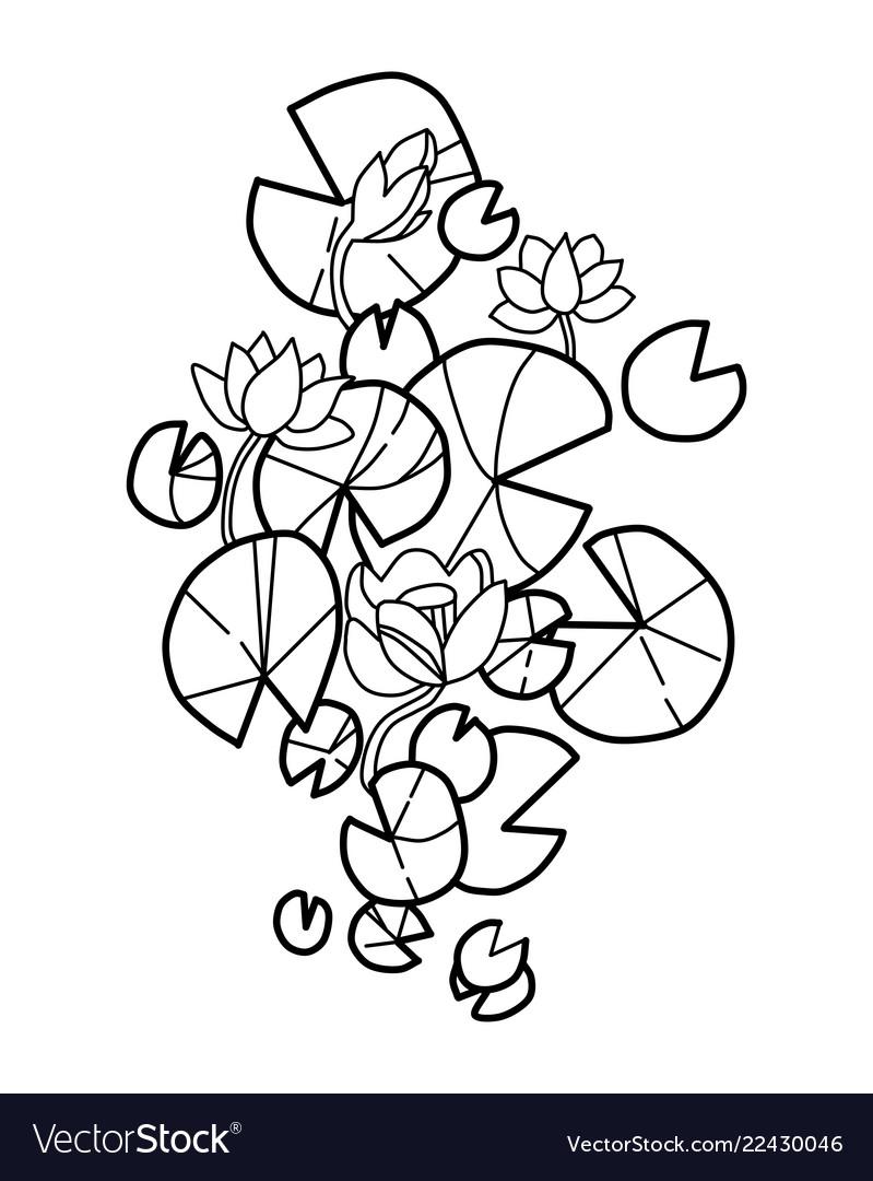 Lotus Flower Blooming In The Pond Line Art Vector Image