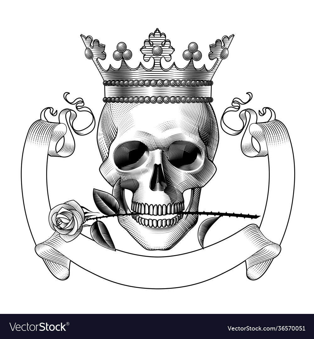 Human skull full face in crown and with a
