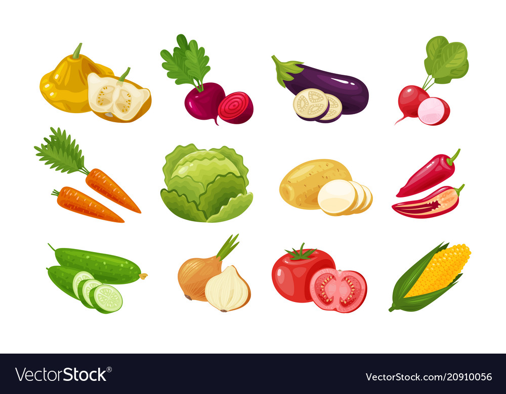Vegetables set of colored icons green vegetable