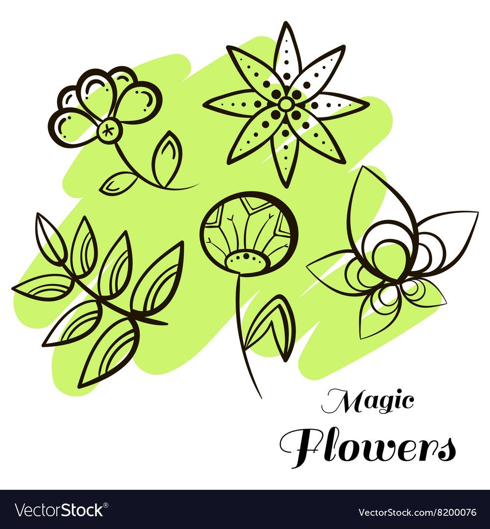Set Magic Flowers
