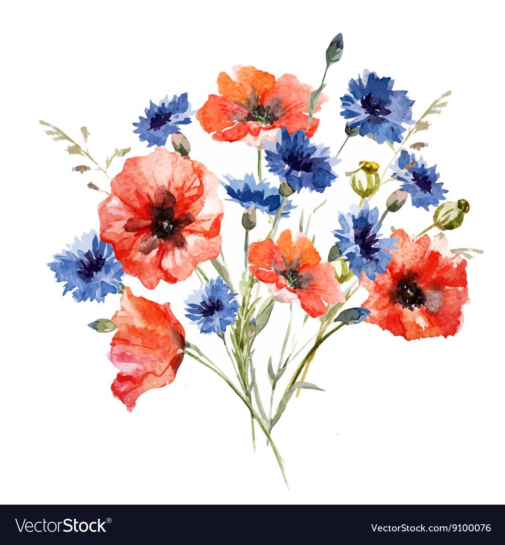 Wild flower bouquet Royalty Free Vector Image - VectorStock