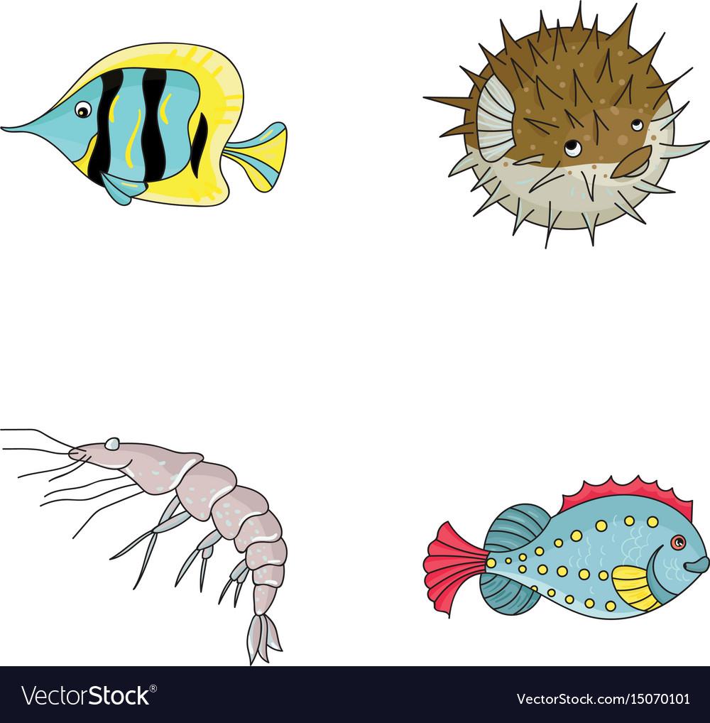 Shrimp fish hedgehog and other speciessea