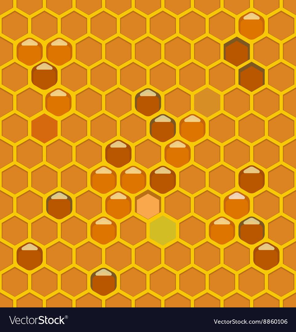 Bee hive lightth