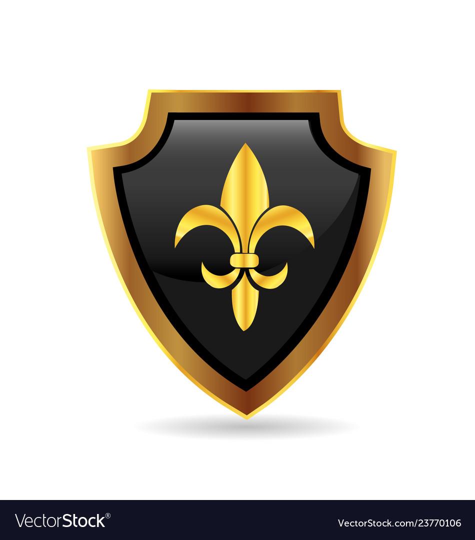 Shield gold emblem logo