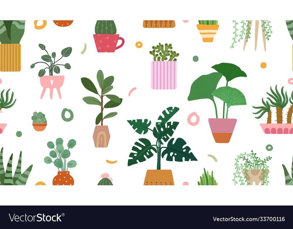 Succulent pattern home plants on pots background