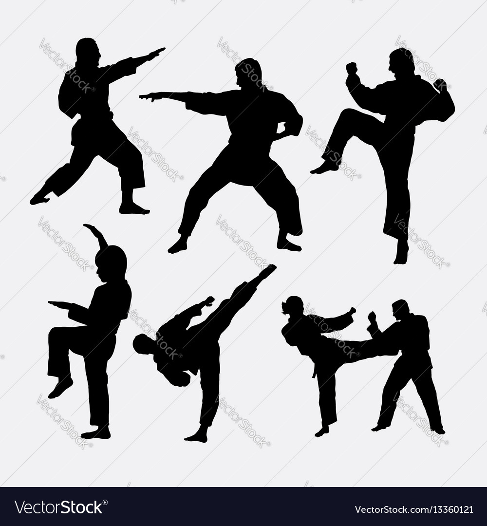 Karate martial art fighter sport silhouette vector image