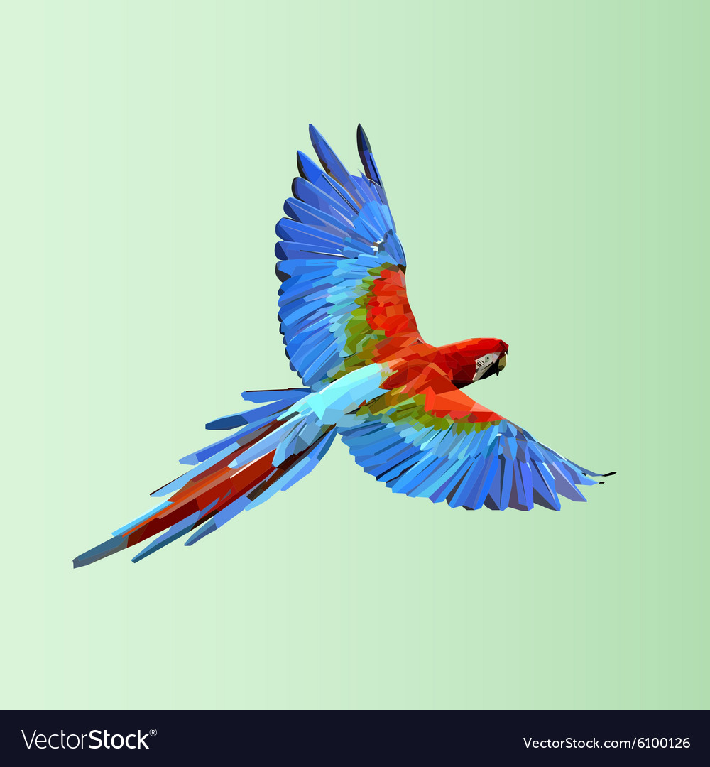 Polygonal Parrot Vector Images 42 Diagram Page 1