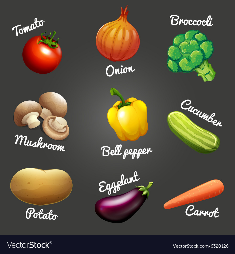 fresh vegetables with names royalty free vector image