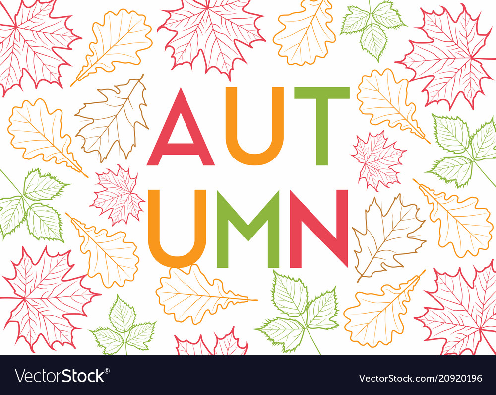 Autumn leaves outline background