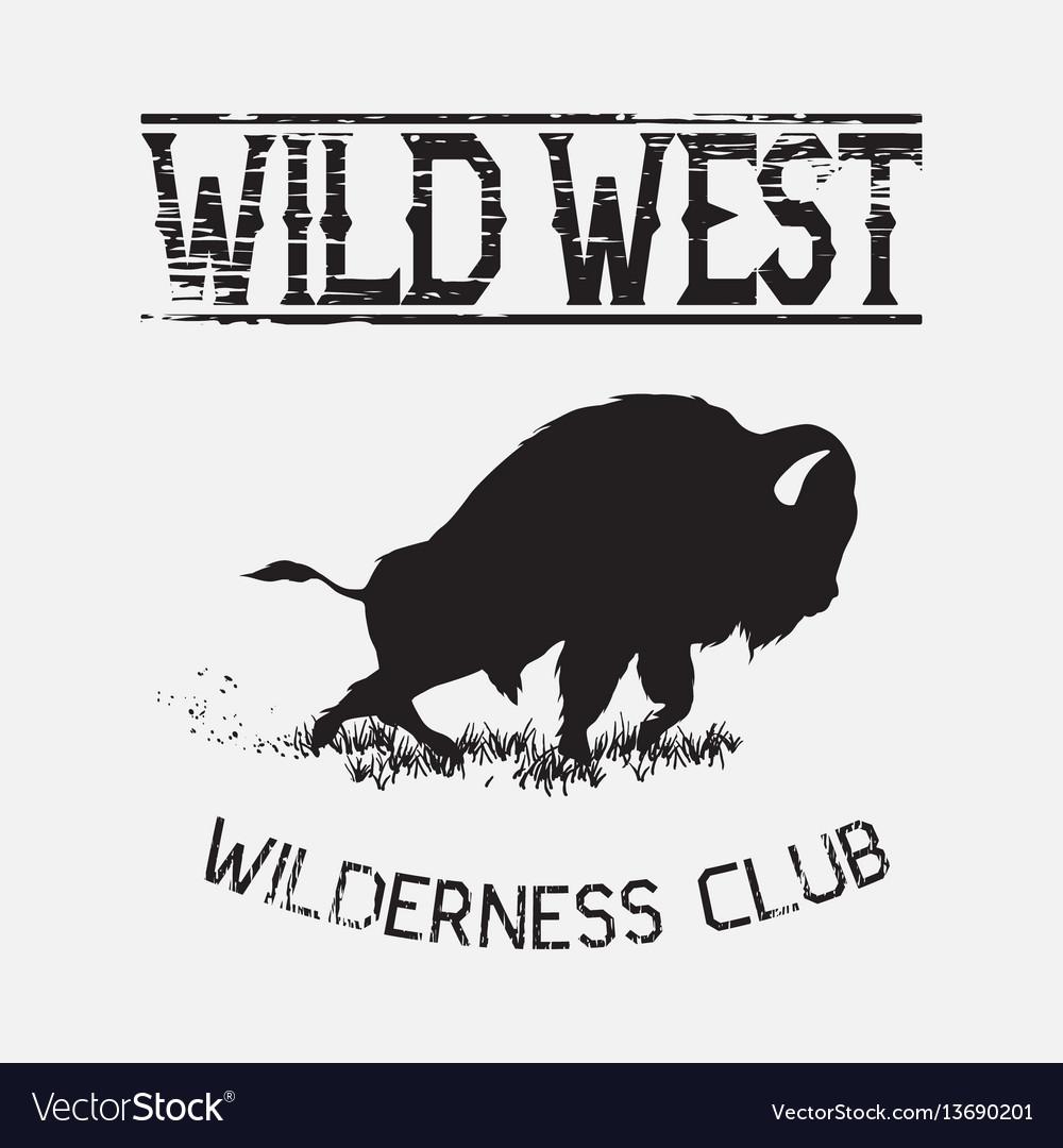 Buffalo wild west