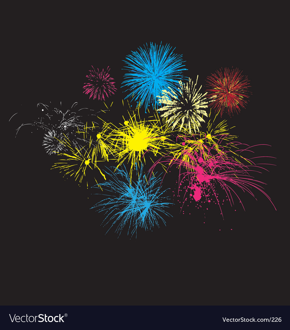 Fireworks on night sky vector image