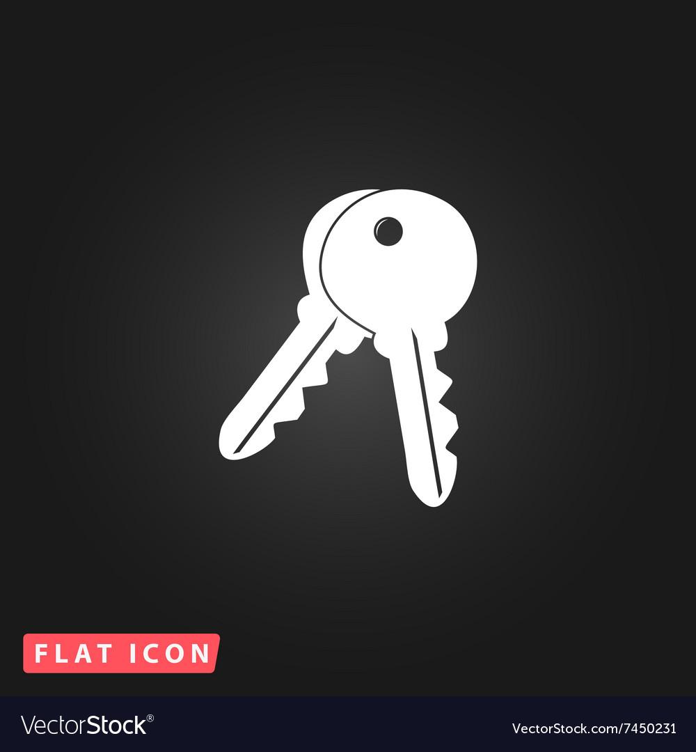 Keys sign icon Unlock tool button vector image