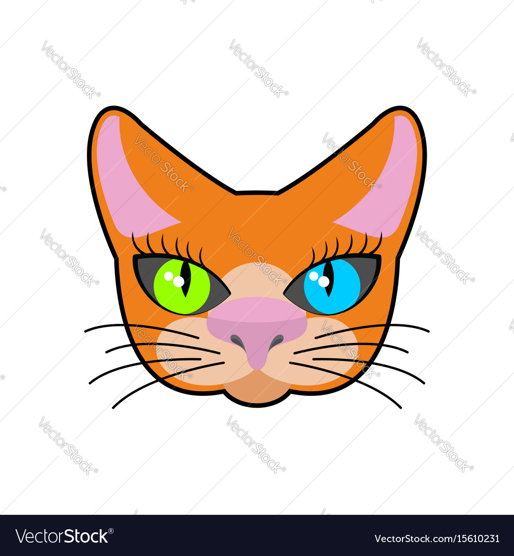 Red-headed cat face isolated pet on green
