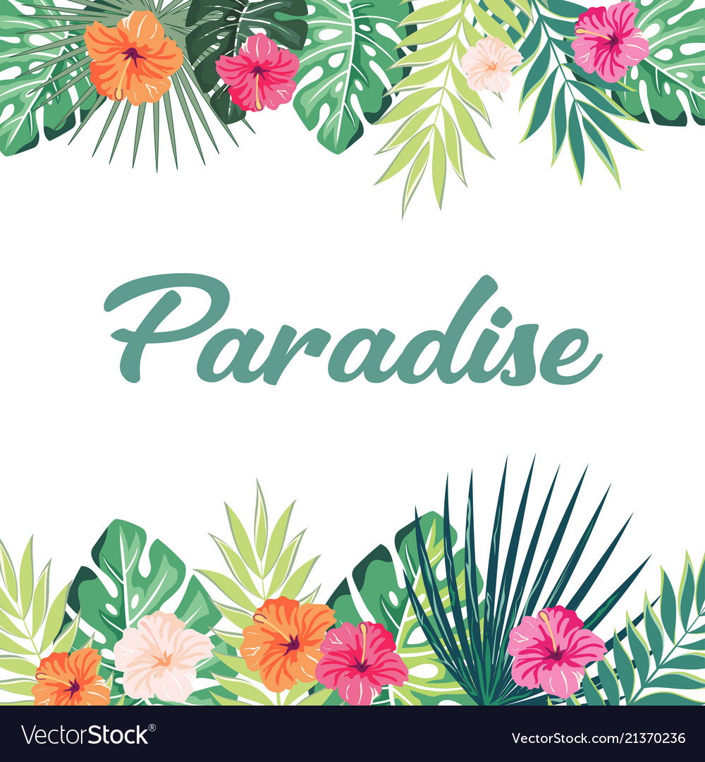 Paradise tropical background