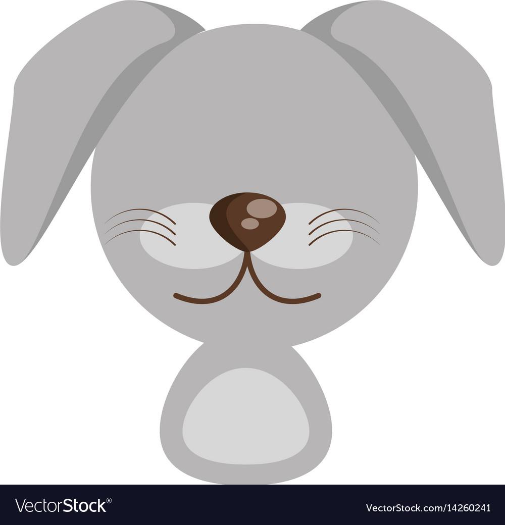 Head cute dog animal image