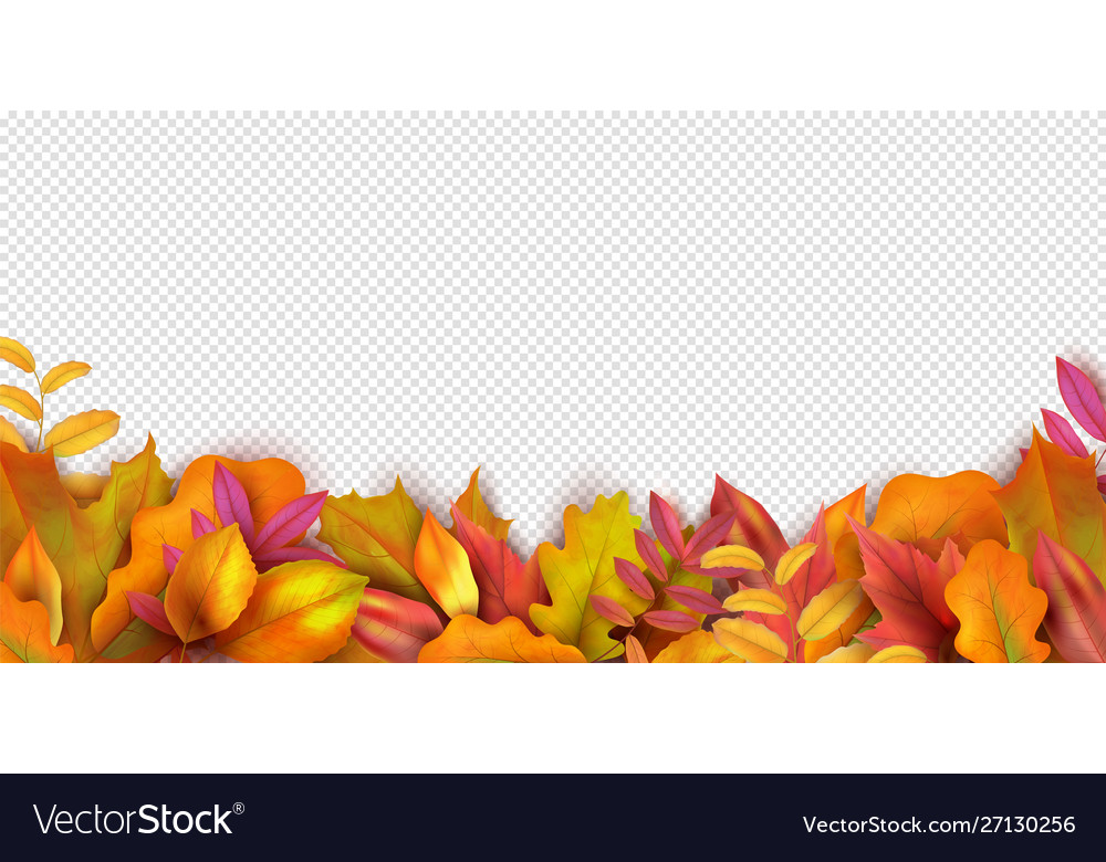 Autumn banner fall leaves background realistic