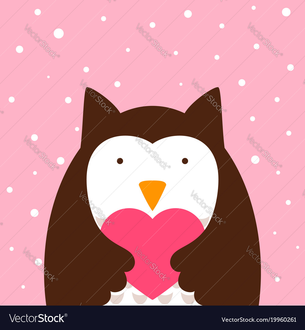 Cartoon owl heart vector image