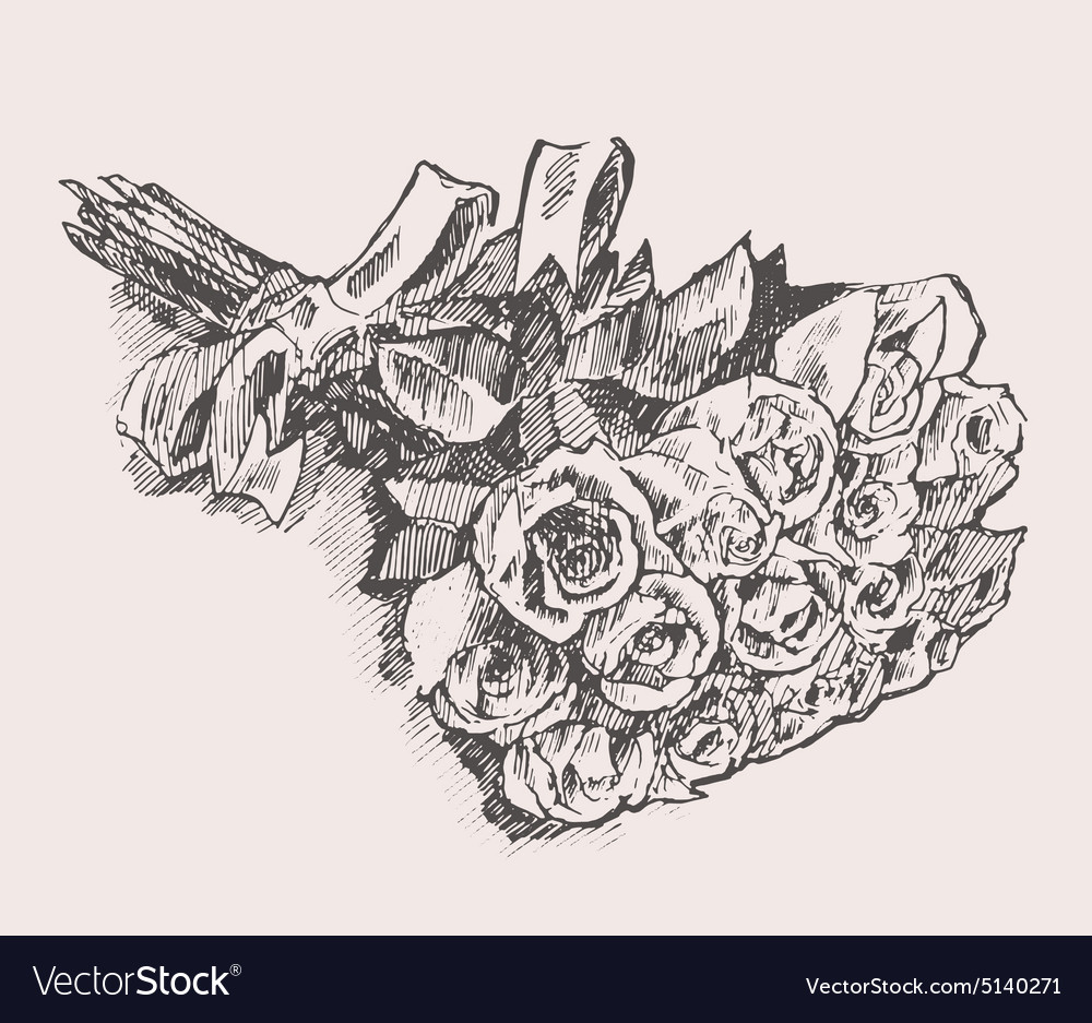Bouquet Of Roses With Ribbon Hand Drawn Sketch Vector Image