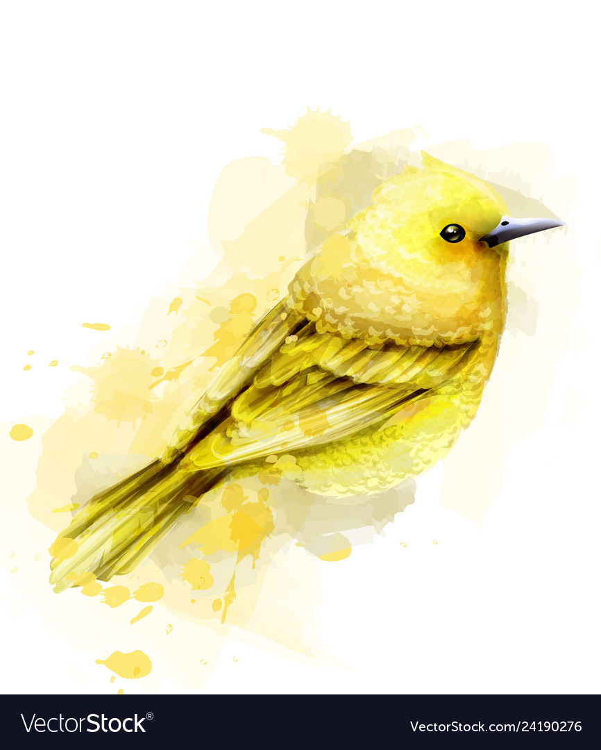 Cute yellow bird watercolor isolated on