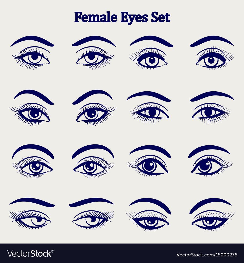 Female eyes sketch set vector image