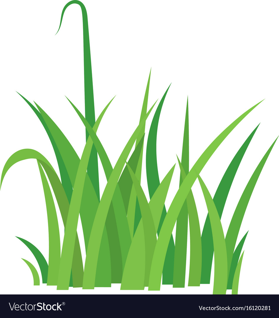 fragment of a green grass royalty free vector image vectorstock