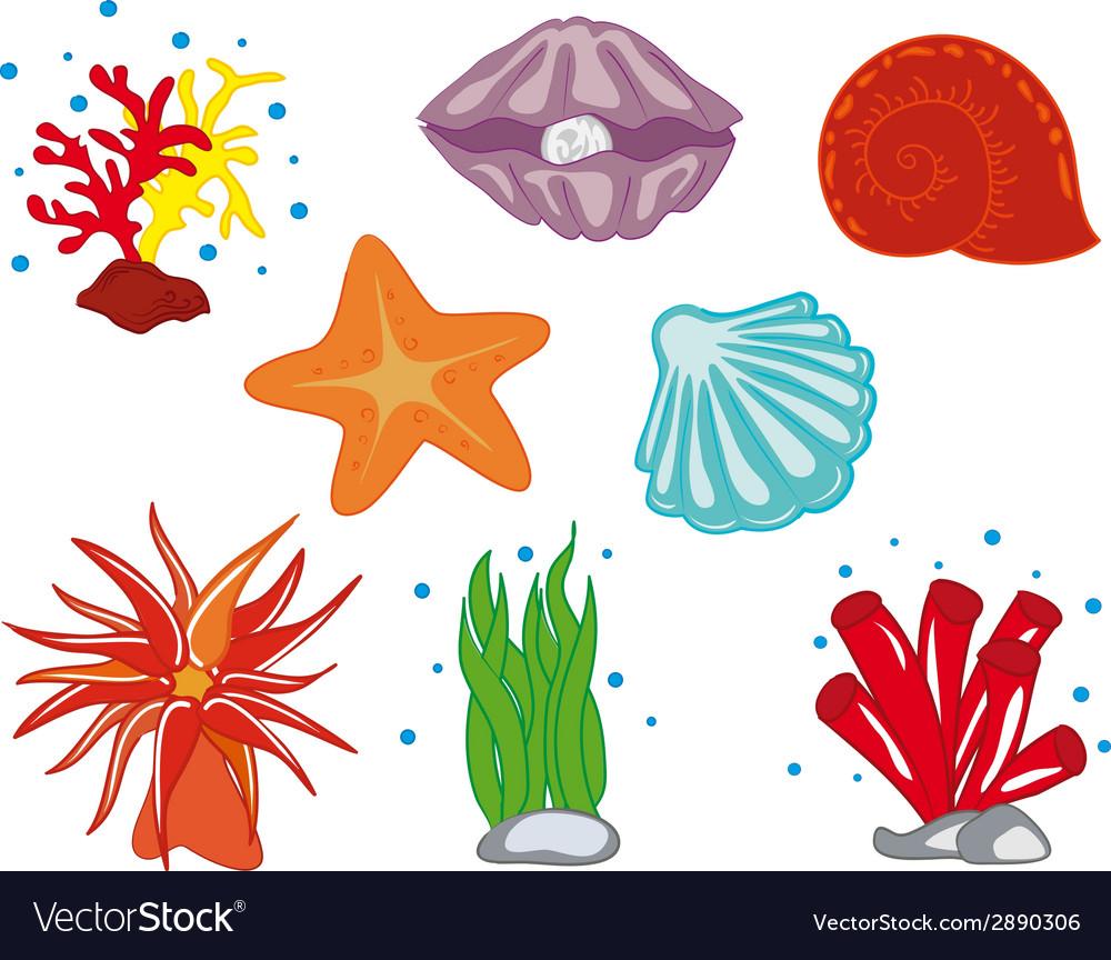 Tropical Ocean Flora vector image