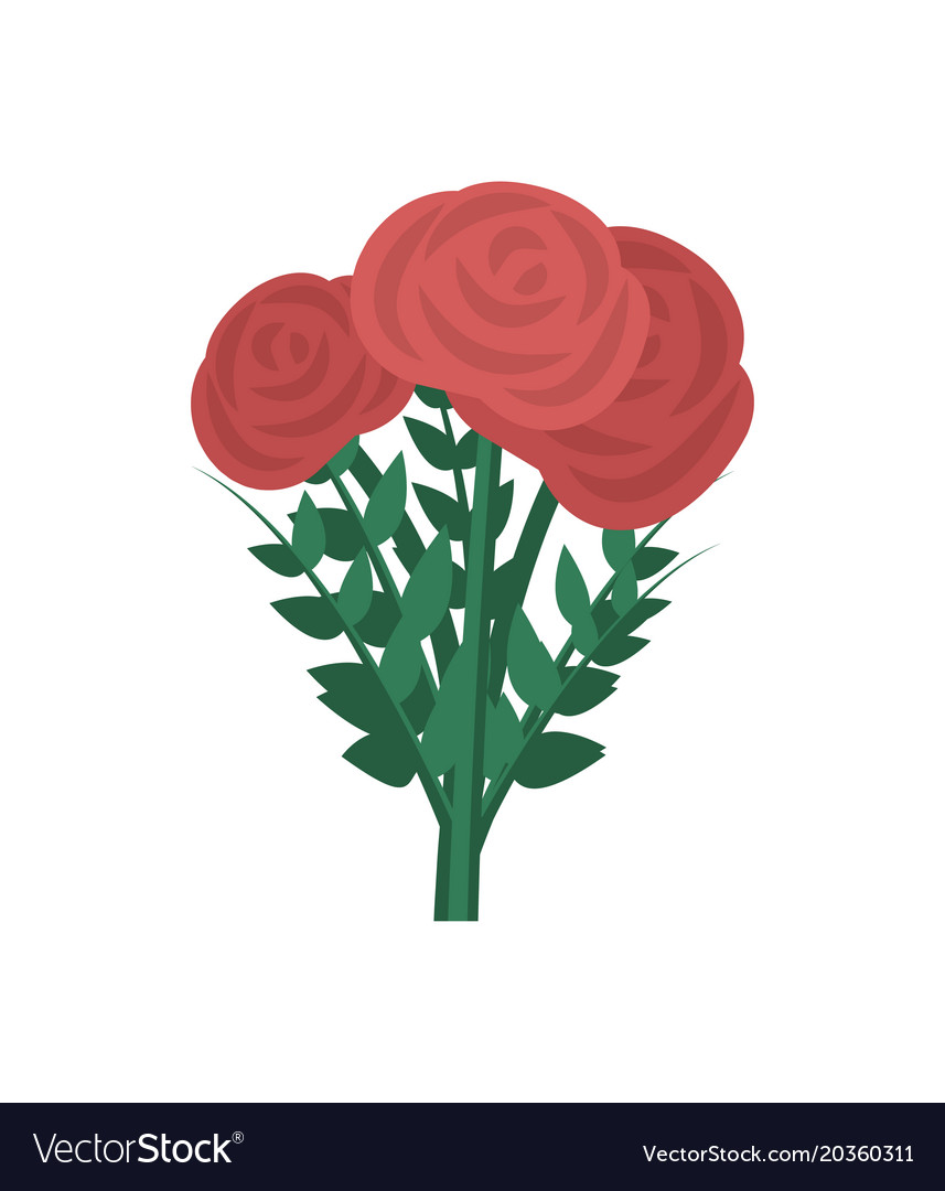 Bouquet of red roses isolated icon vector image