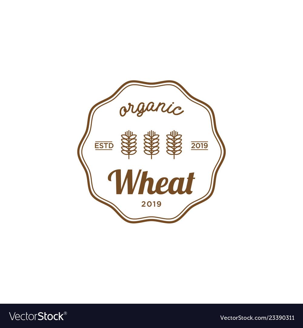 Wheat organic vintage logo design inspiration