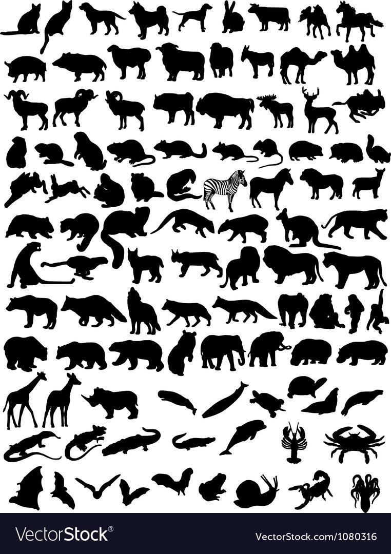 100 animals vector image