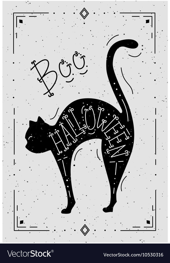 A cat with the word Halloween