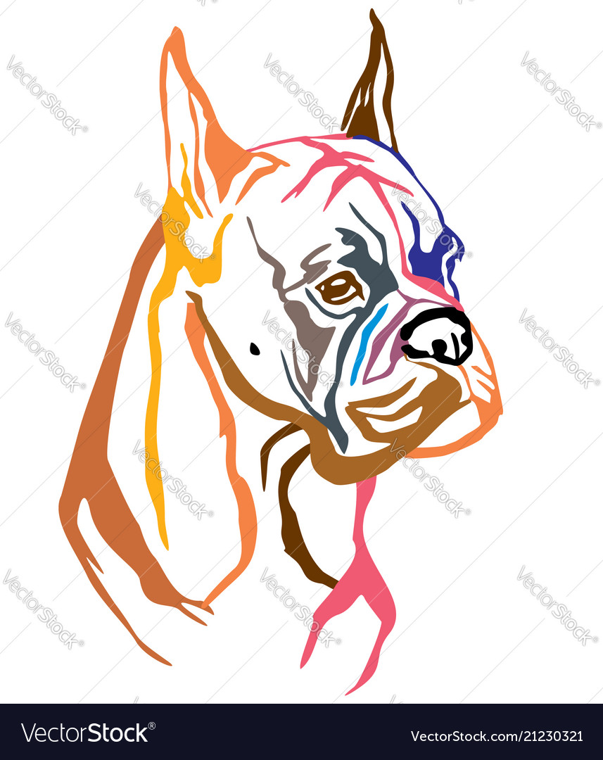 Colorful decorative portrait of dog boxer