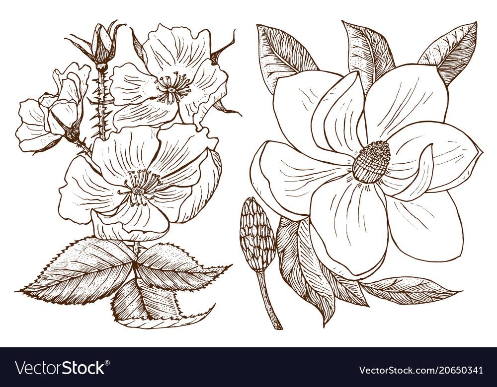 Wedding botanical flowers in the garden or spring