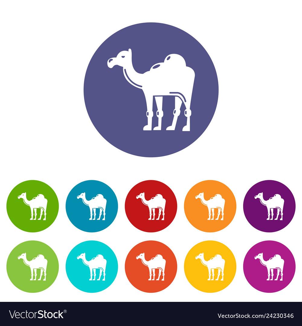 Camel icons set color