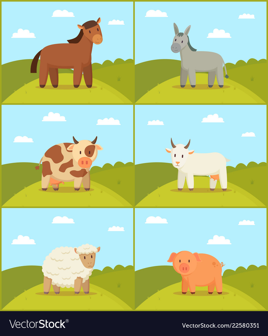 Farm animal on scenery backdrop set