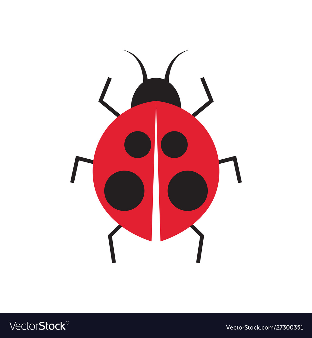 Lady bug graphic design template isolated