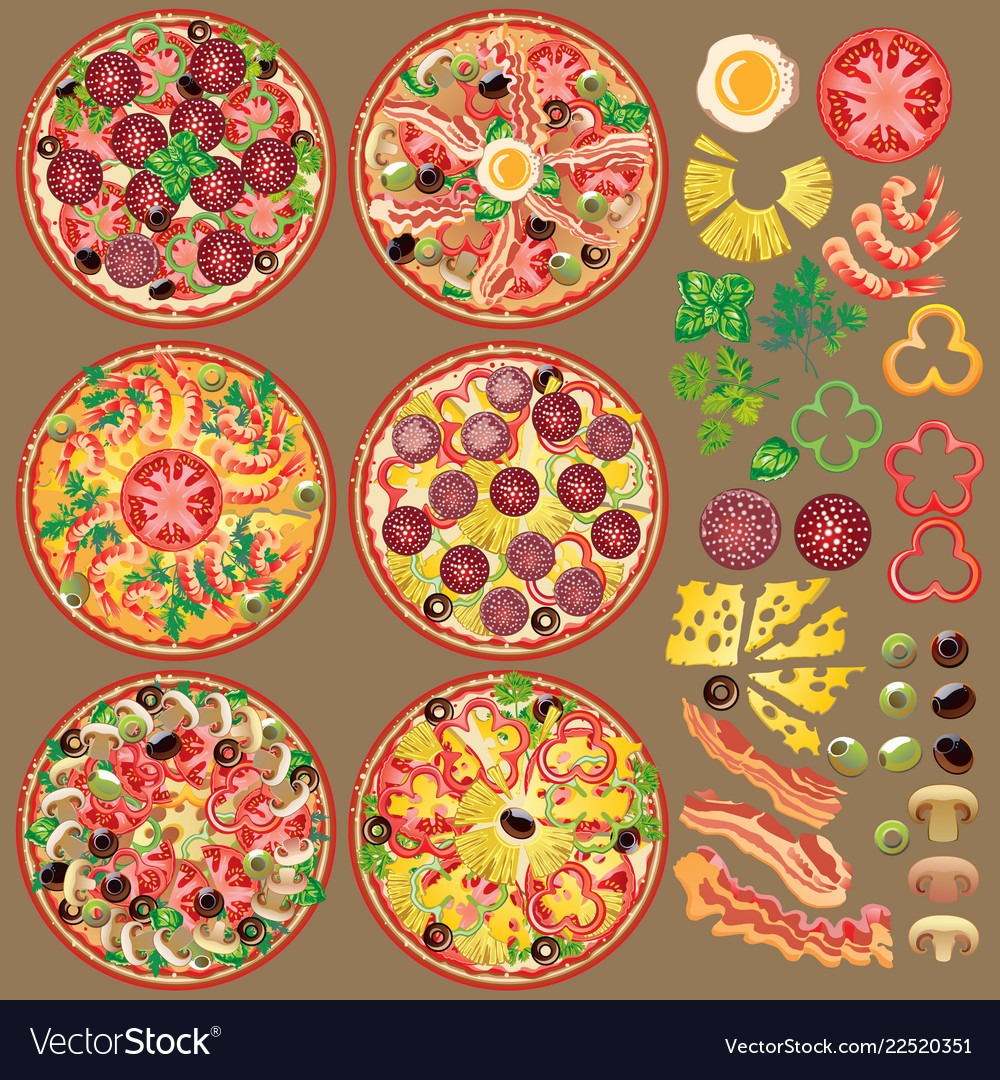 Set of different pizza ingredients six types of