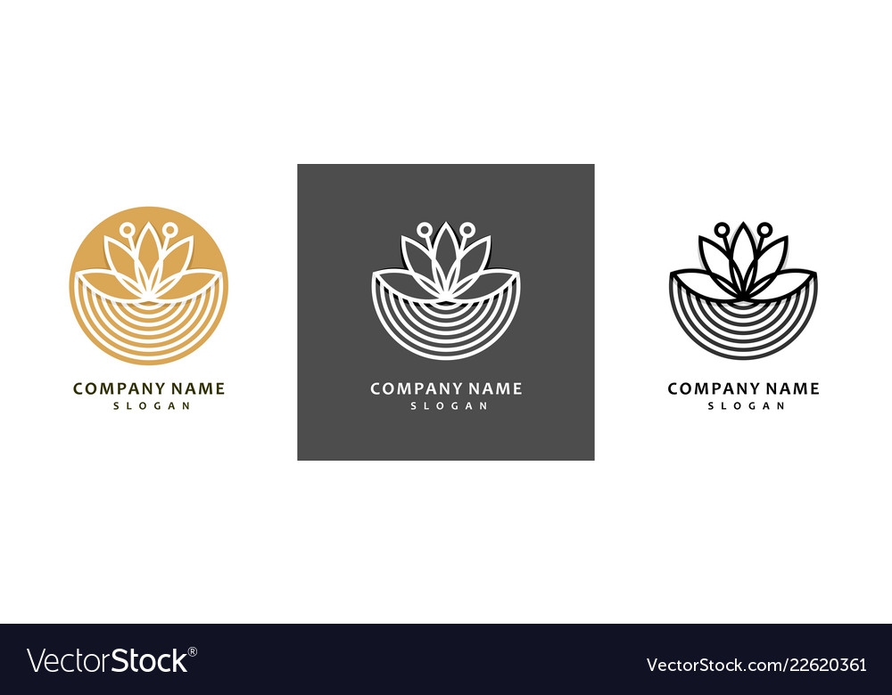 Colorful lotus logo set royal lotus flower