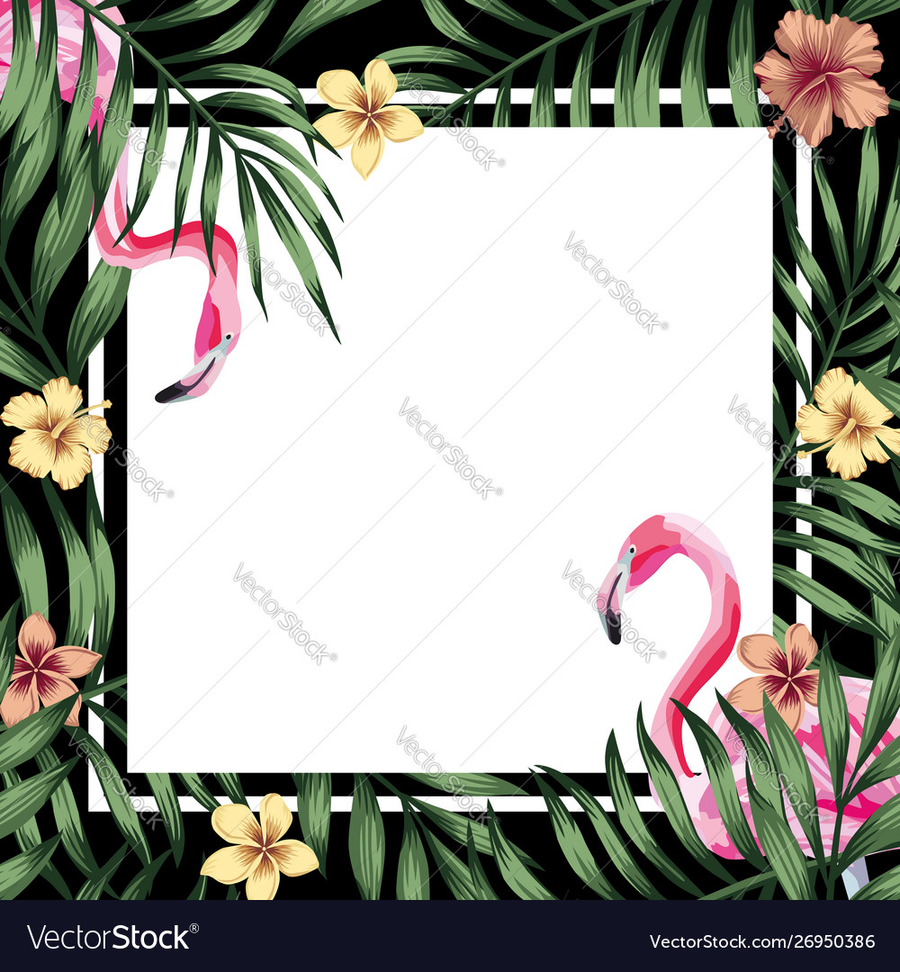 Tropical frame flamingo hibiscus leaves black