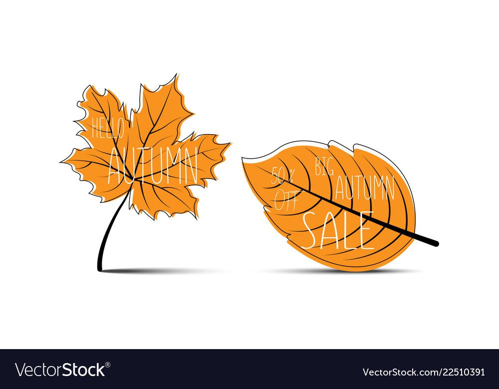 Hello autumn autumn leaves big autumn sale 50 off