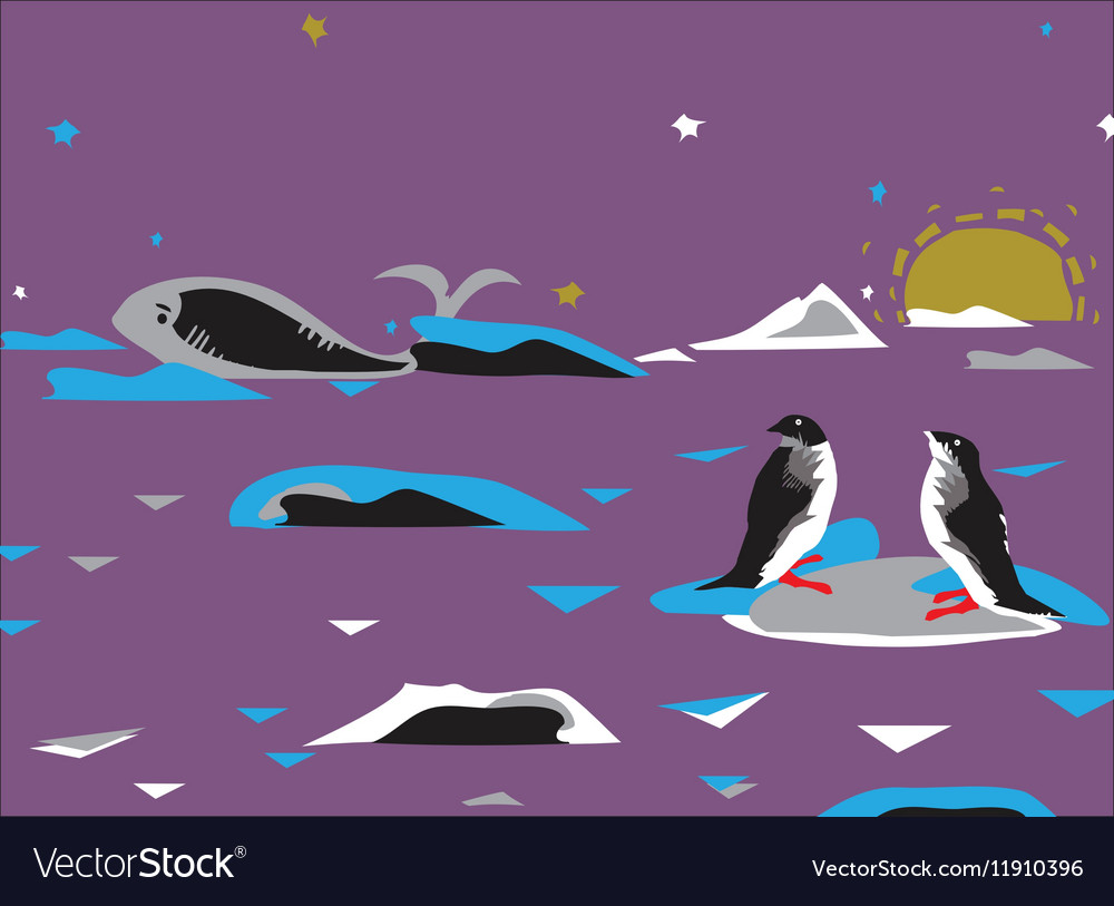 Penquins And Whale vector image
