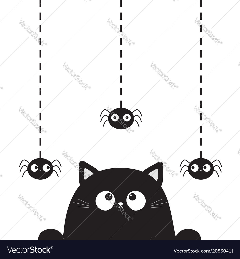 Black cute cat kitten face head looking on hanging