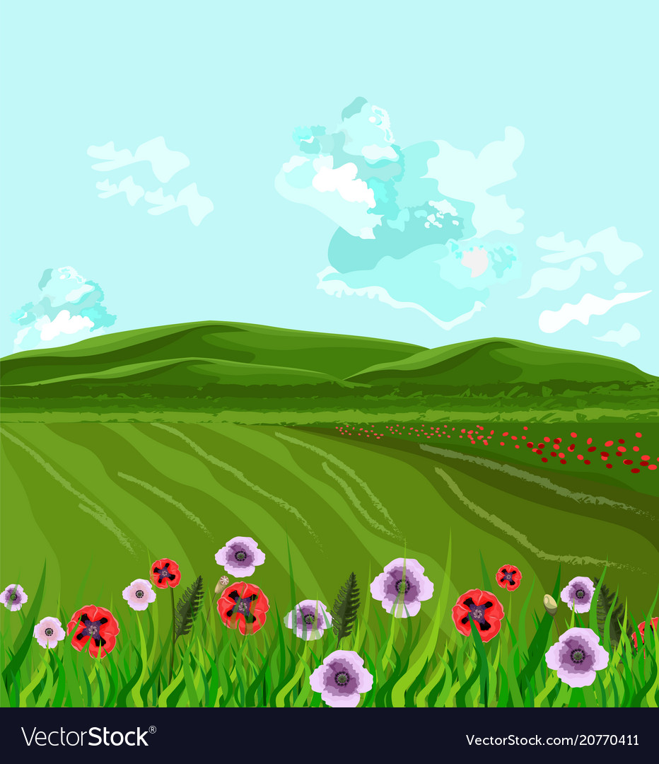Green fields spring background decor