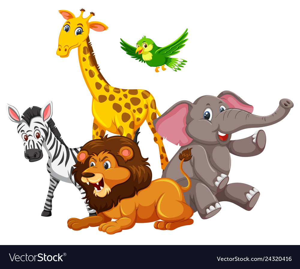 Group of wild animals Royalty Free Vector Image