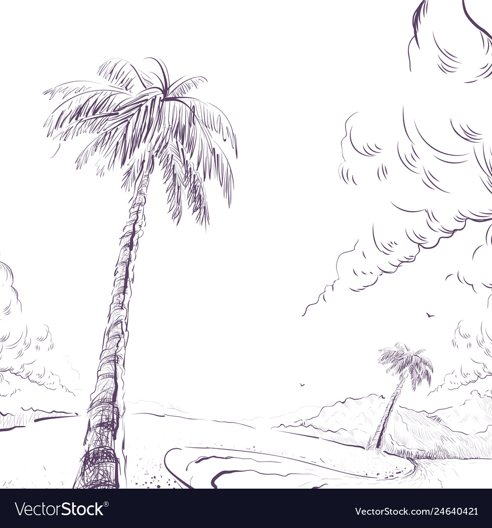 Palm tree on sandy beach shore and cloud