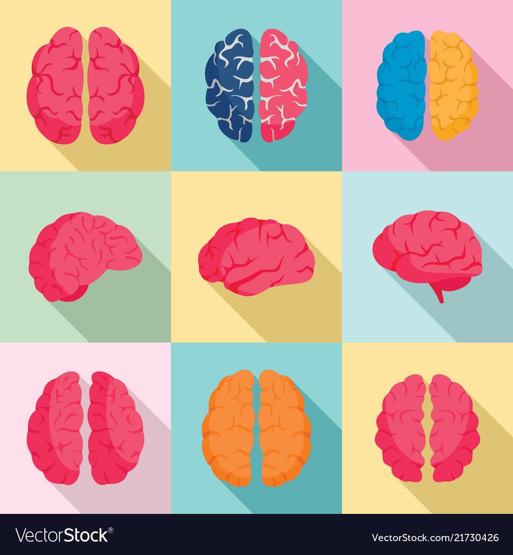Genius brain icon set flat style